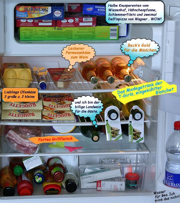 Svenjas Kühlschrank