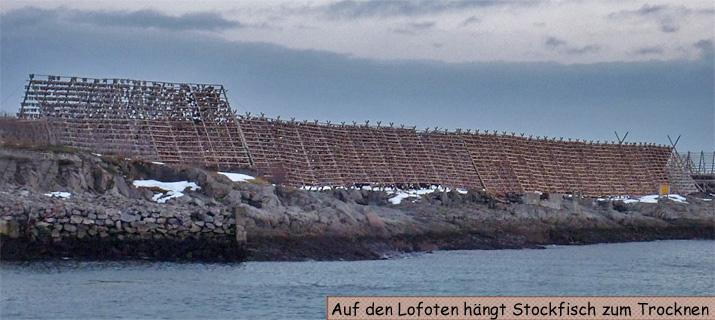 Lofoten Stockfisch Trockengestelle